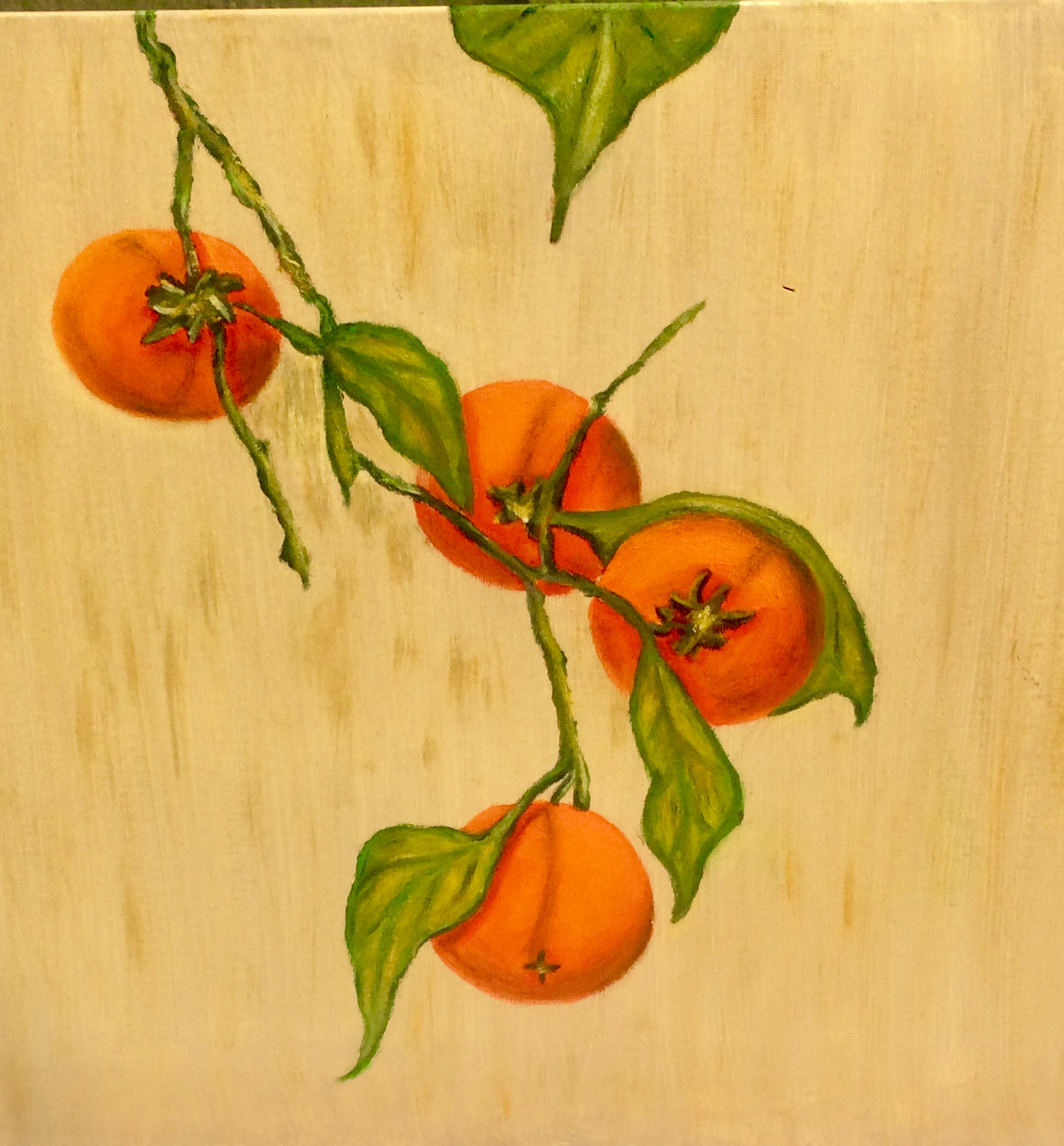 Persimmons - 18 x 18 - Oil on Canvas - $325