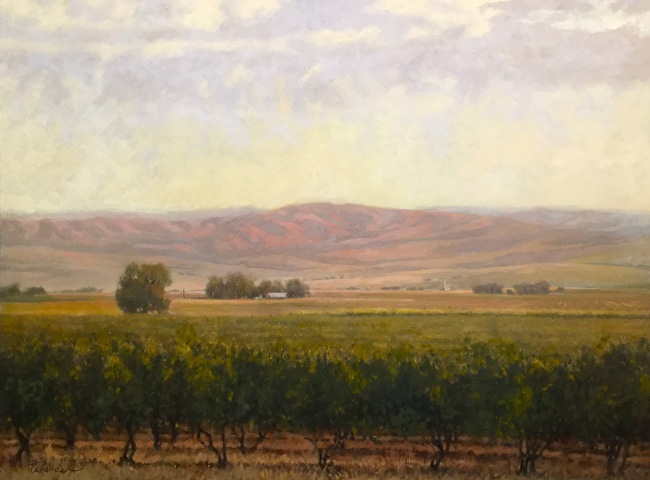 Kinhaven Vineyard ‐ Oil ‐ Canvas